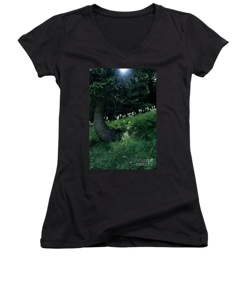 Women's V-Neck T-Shirt (Junior Cut) featuring the photograph Bear-grass Ridge II by Sharon Elliott