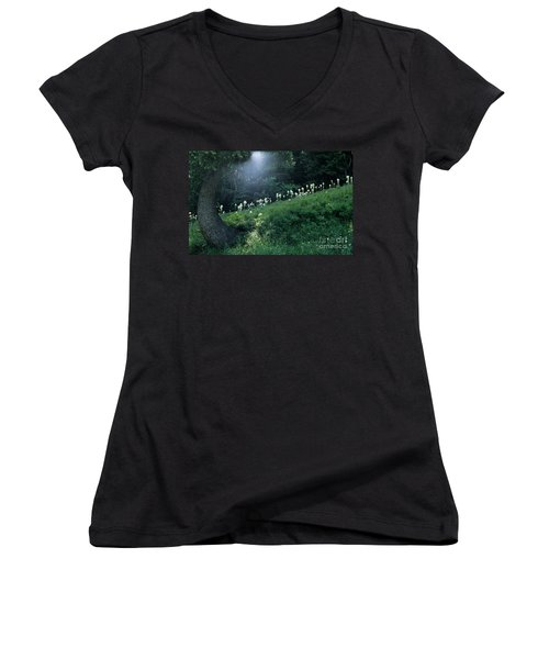 Women's V-Neck T-Shirt (Junior Cut) featuring the photograph Bear-grass Ridge by Sharon Elliott
