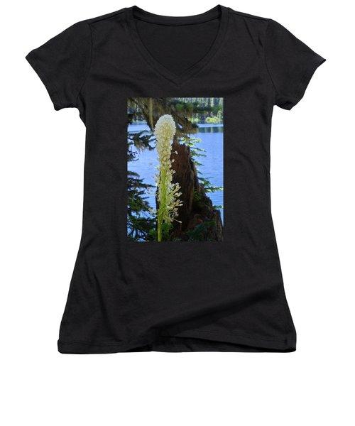 beargrass and Stump Women's V-Neck T-Shirt
