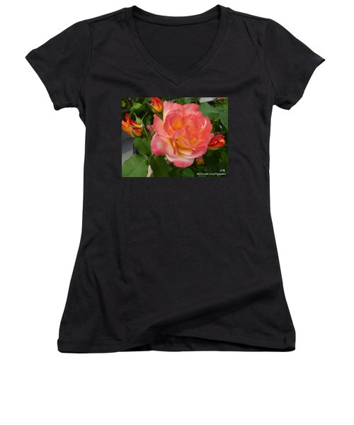 Women's V-Neck T-Shirt (Junior Cut) featuring the photograph Beautiful Rose With Buds by Lingfai Leung