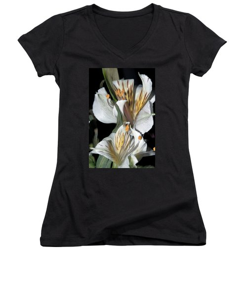 Women's V-Neck T-Shirt (Junior Cut) featuring the photograph Beauty Untold by Tikvah's Hope