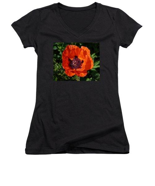 Women's V-Neck T-Shirt (Junior Cut) featuring the photograph Big Red Poppy by Lynn Bolt