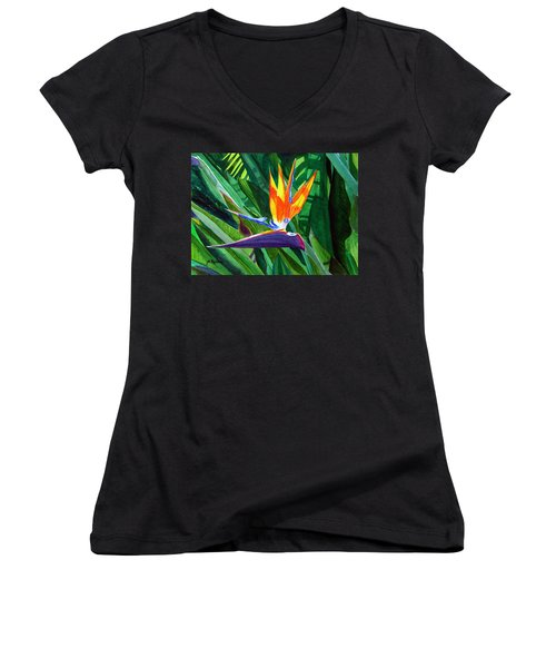 Bird-of-paradise Women's V-Neck T-Shirt (Junior Cut) by Mike Robles