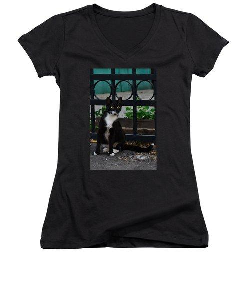Black Cat On Black Background Women's V-Neck