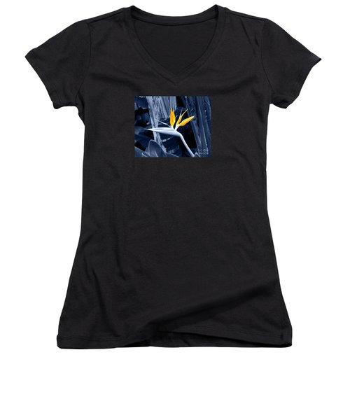 Blue Bird Of Paradise Women's V-Neck T-Shirt (Junior Cut) by Rebecca Margraf