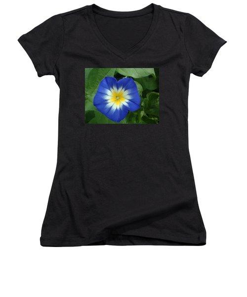 Women's V-Neck T-Shirt (Junior Cut) featuring the photograph Blue Burst by Bonfire Photography