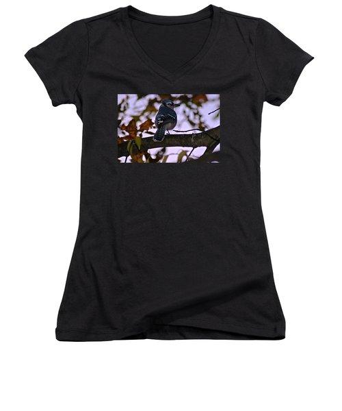 Blue Jay Women's V-Neck T-Shirt (Junior Cut) by Joe Faherty