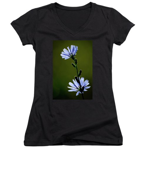 Blue Wildflower Women's V-Neck