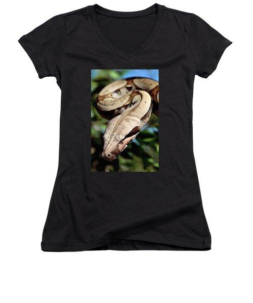 Boa Constrictor Boa Constrictor Women's V-Neck T-Shirt