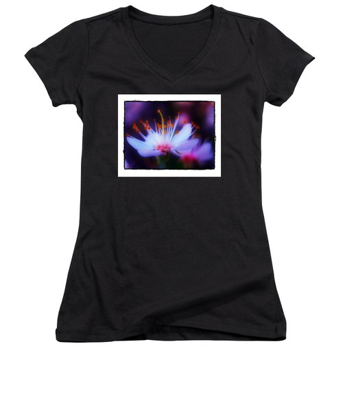 Bradford Ballet Women's V-Neck T-Shirt (Junior Cut) by Judi Bagwell