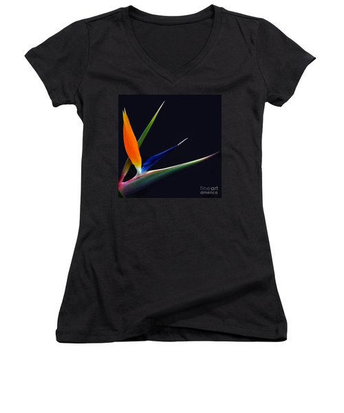 Women's V-Neck featuring the photograph Bright Bird Of Paradise Square Frame by Byron Varvarigos