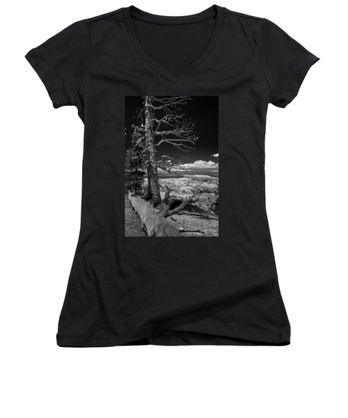 Bryce Canyon - Dead Tree Black And White Women's V-Neck T-Shirt (Junior Cut) by Larry Carr
