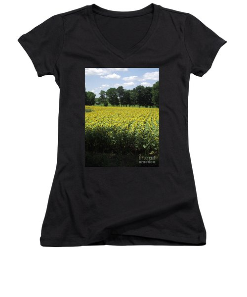 Buttonwood Farm Women's V-Neck (Athletic Fit)