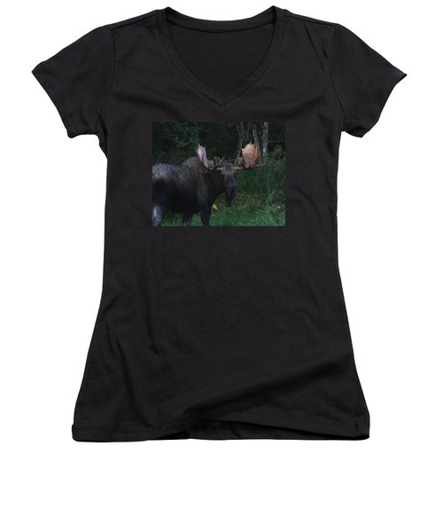 Women's V-Neck T-Shirt (Junior Cut) featuring the photograph Checking You Out by Doug Lloyd