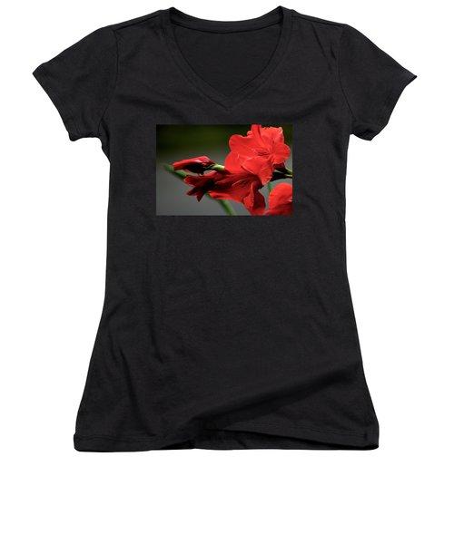 Chromatic Gladiola Women's V-Neck T-Shirt