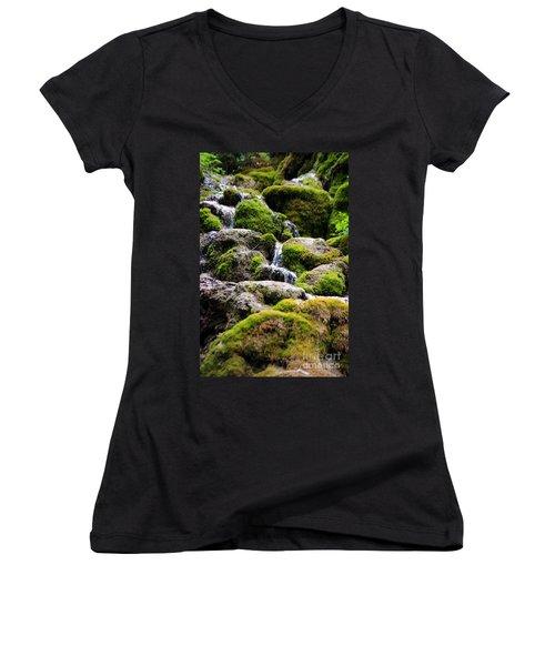 Women's V-Neck T-Shirt (Junior Cut) featuring the photograph Colorado 5 by Deniece Platt