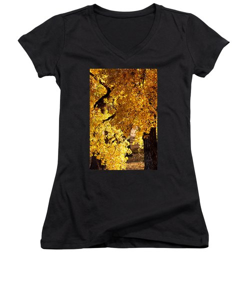 Colorado Gold Women's V-Neck T-Shirt (Junior Cut) by Colleen Coccia