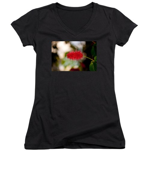 Women's V-Neck T-Shirt (Junior Cut) featuring the photograph Crimson Bottle Brush by Tikvah's Hope