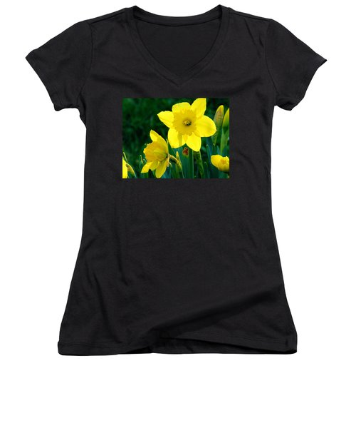 Women's V-Neck T-Shirt (Junior Cut) featuring the photograph Daffodils by Sherman Perry