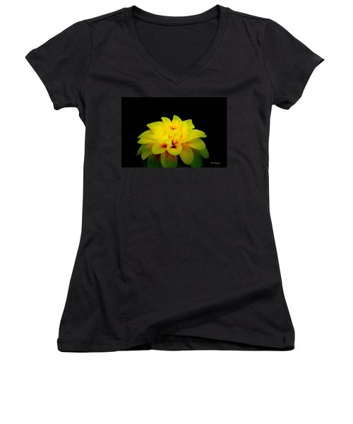 Dahlia Delight Women's V-Neck T-Shirt (Junior Cut) by Jeanette C Landstrom