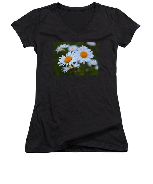 Women's V-Neck T-Shirt (Junior Cut) featuring the photograph Daisy by Athena Mckinzie