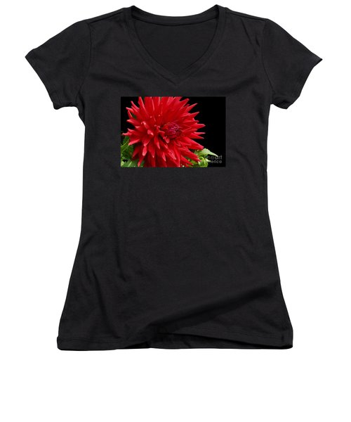 Decked Out Dahlia Women's V-Neck T-Shirt (Junior Cut) by Cindy Manero