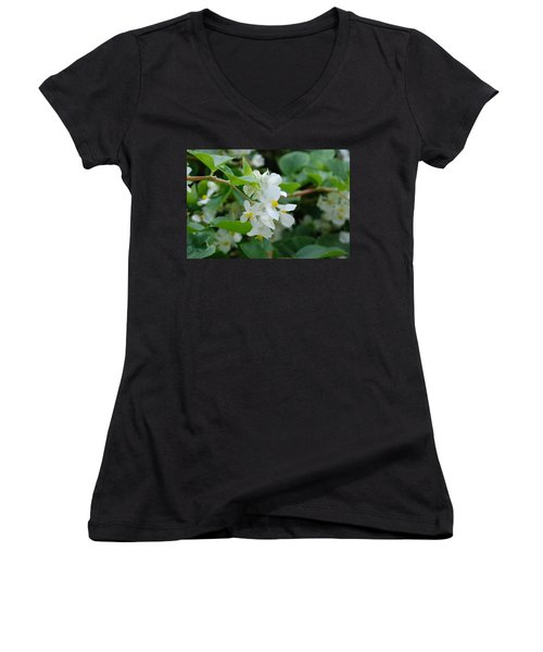 Women's V-Neck T-Shirt (Junior Cut) featuring the photograph Delicate White Flower by Jennifer Ancker