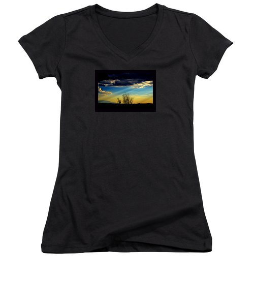 Desert Dusk Women's V-Neck (Athletic Fit)