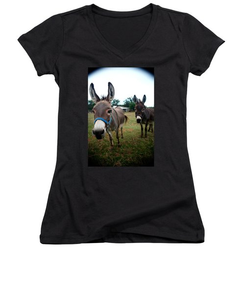Women's V-Neck T-Shirt (Junior Cut) featuring the photograph Doting Donkeys by Lon Casler Bixby
