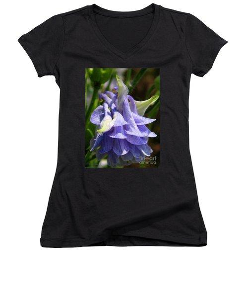 Double Columbine Named Light Blue Women's V-Neck T-Shirt (Junior Cut) by J McCombie
