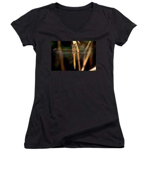 Women's V-Neck T-Shirt (Junior Cut) featuring the photograph Dragon Fly 1 by Pedro Cardona