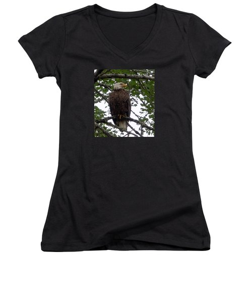Women's V-Neck T-Shirt (Junior Cut) featuring the photograph Eagle At Hog Bay Maine by Francine Frank