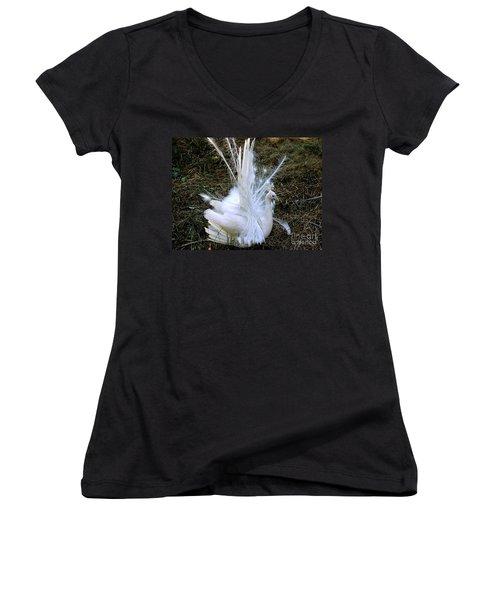 Effervescence Women's V-Neck T-Shirt (Junior Cut) by Rory Sagner