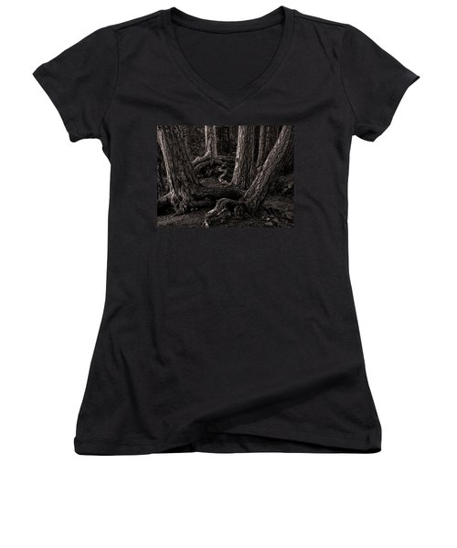 Evening Pines Women's V-Neck T-Shirt