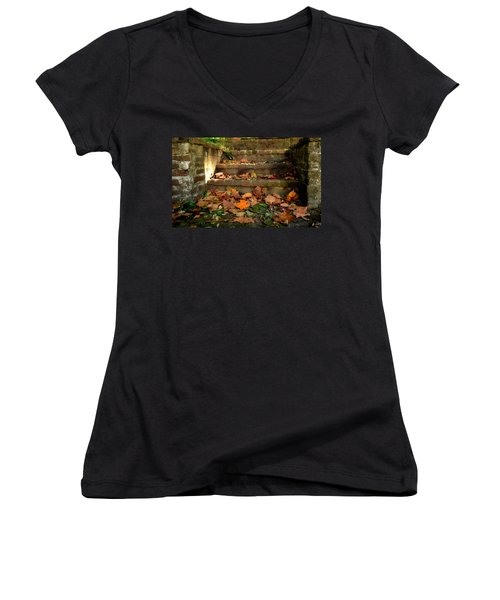 Fall Women's V-Neck T-Shirt (Junior Cut) by Brian Hughes
