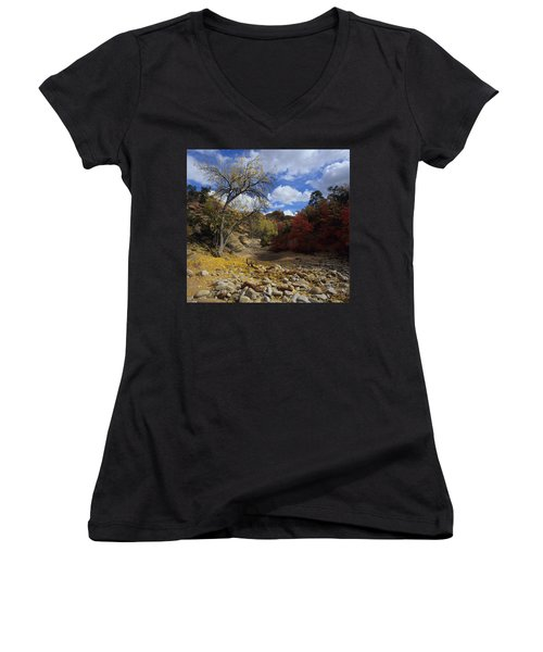 Fall In Zion High Country Women's V-Neck