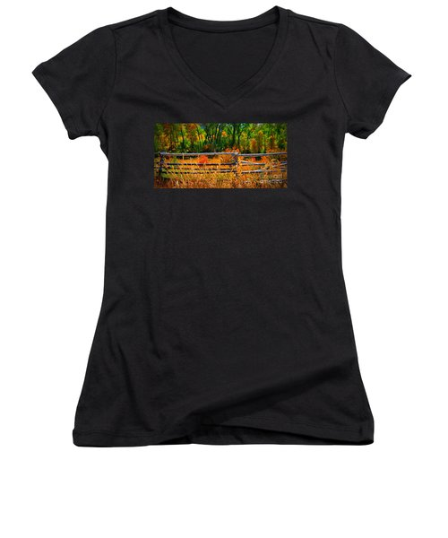 Fall  Women's V-Neck T-Shirt (Junior Cut) by Janice Westerberg
