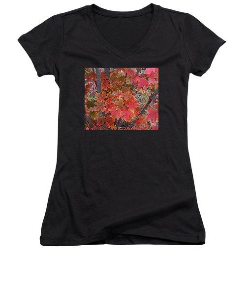 Fall Red Women's V-Neck T-Shirt (Junior Cut) by David Pantuso