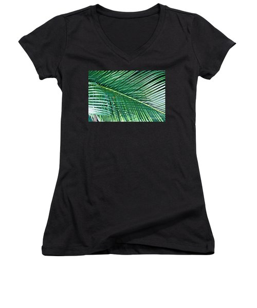 Ferns 56 Women's V-Neck