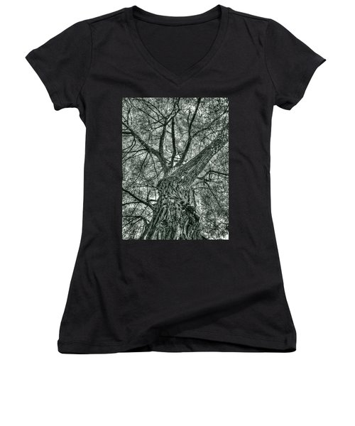 Finkles Landing Tree Women's V-Neck T-Shirt