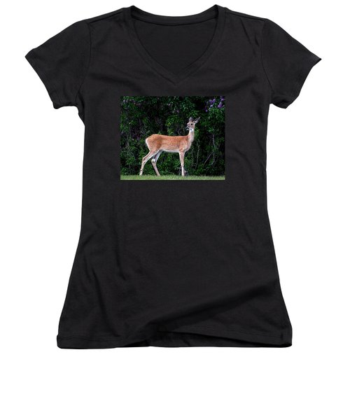 Flower Deer Women's V-Neck T-Shirt (Junior Cut) by Steve McKinzie
