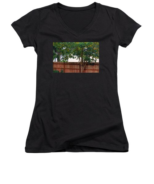 Fog In Olympia II Women's V-Neck T-Shirt (Junior Cut) by Jeanette C Landstrom