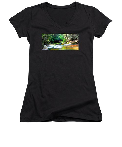 French Broad River Filtered Women's V-Neck