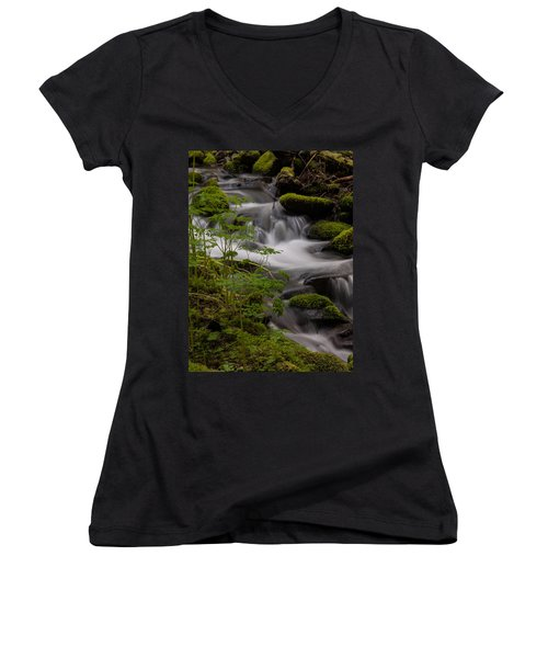 Gently Falling Women's V-Neck T-Shirt