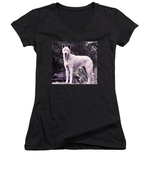 Ghost The Wolf Women's V-Neck T-Shirt (Junior Cut) by Maria Urso