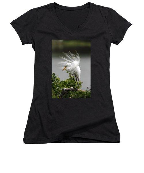 Great Egret Women's V-Neck T-Shirt