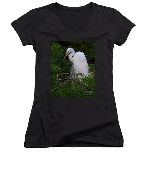 Women's V-Neck T-Shirt (Junior Cut) featuring the photograph Great Egret Nesting by Art Whitton