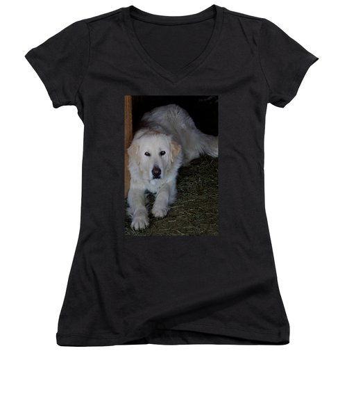 Guarding The Barn Women's V-Neck (Athletic Fit)