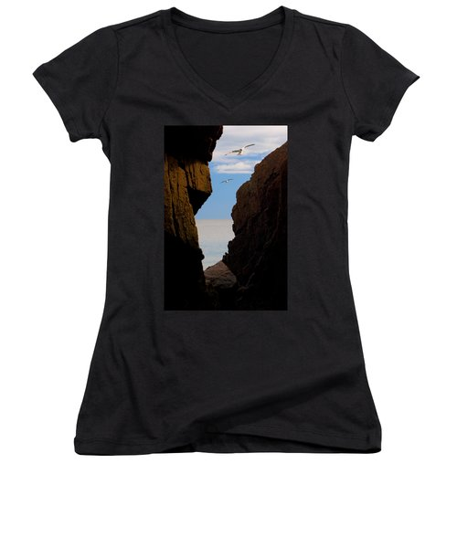 Women's V-Neck T-Shirt (Junior Cut) featuring the photograph Gulls Of Acadia by Brent L Ander