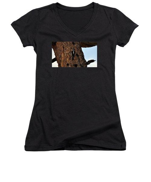Hairy Woodpecker On Pine Tree Women's V-Neck